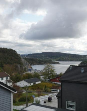 Bergen Fjordview